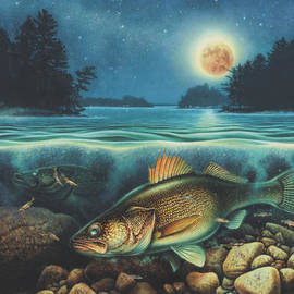 JQ Licensing - Midnight Walleye