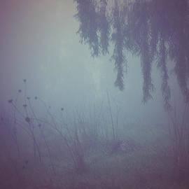 Oksana Art - Mist