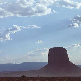 Mark Greenberg - Monument Valley 4