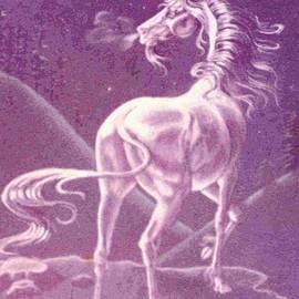 Dy Witt - Moonlight Unicorn