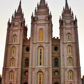 Bruce Bley - Morman Temple 01