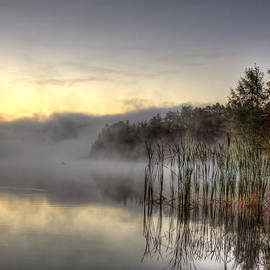 Gary Smith - Morning Fog with a Loon