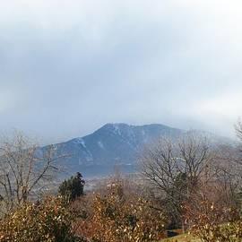 Gretchen Wrede - Mountain Storm