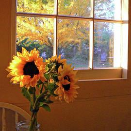 Pamela Patch - My Sisters Kitchen Window