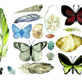 Kristen Fernandez - Nature Collection