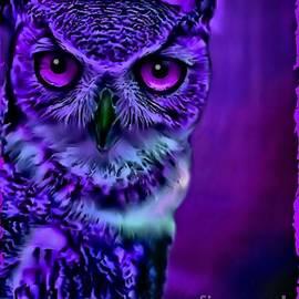 Tisha McGee - Night Owl