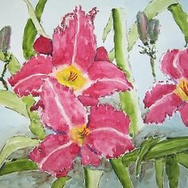 James Cox - NIne Blooms