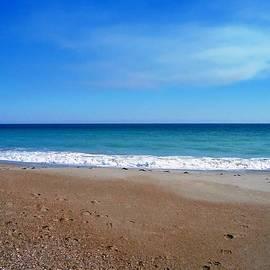 Joan Meyland - Ocean Blue