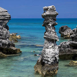 Sally Weigand - Ocean Rock Formations