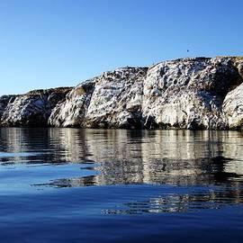 George Cousins - Ocean Sanctuary