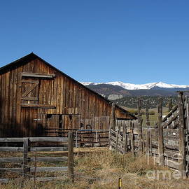 Donna Parlow - Old Colorado Barn