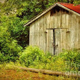 Cheryl Davis - Old Country Shed