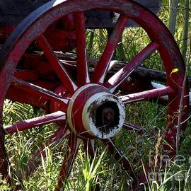 Donna Parlow - Old Fire Wagon Wheel