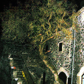 Colette V Hera  Guggenheim  - Old house night South France