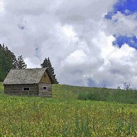Ernie Echols - Old Ranchers Summer Cabin Redone
