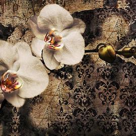 Claudia Moeckel - Orchid
