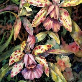 Ann  Nicholson - Orchid Garden