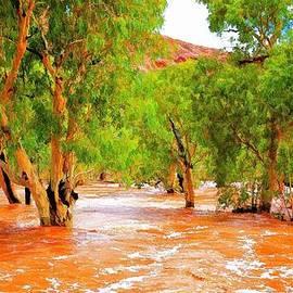 Paul Svensen - Outback Flood