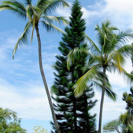 Elizabeth Eells - Palms in Hawaii