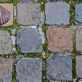 David Freuthal - Paving stones
