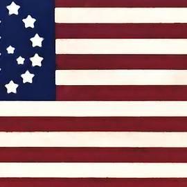 Bill Cannon - Peace Flag