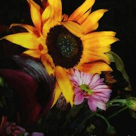 RC DeWinter - Petals Curved and Pointed