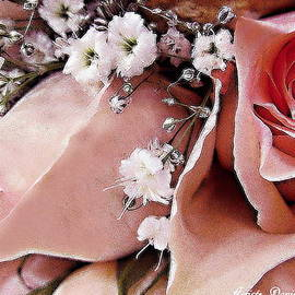 Danielle  Parent - Pink Roses