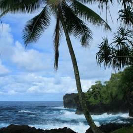Sharon Mau - Poponi Ulaino Mokupupu Maui North Shore Hawaii