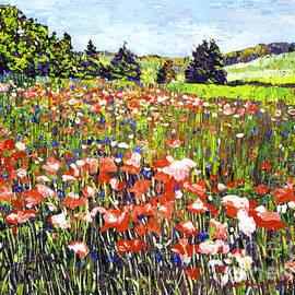 David Lloyd Glover - Poppy Fields in France