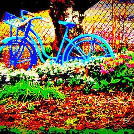 Diane montana Jansson - Pretty Bicycle