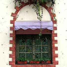Yali Shi - Pretty Decorated Window