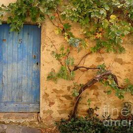 Lainie Wrightson - Provence Door 5