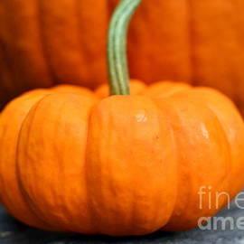 Dyana Rzentkowski - Pumpkin Portrait