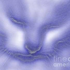 Linsey Williams - Digital Puss In Blue