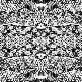 Linda Phelps - PVC Pipe Abstrcat Dark