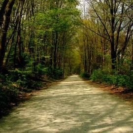 Kristine Nora - Rails to Trails