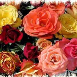 Peg Urban - Rainbow of Roses
