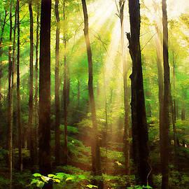 Darren Fisher - Rays of Hope