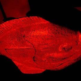 Allen n Lehman - Red Herring