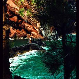 Susanne Still - Red Sands Beach Maui