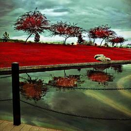 Afrodita Ellerman - Reflection