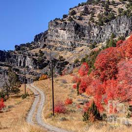 Gary Whitton - Road Less Traveled - Blacksmith Fork Canyon - Utah