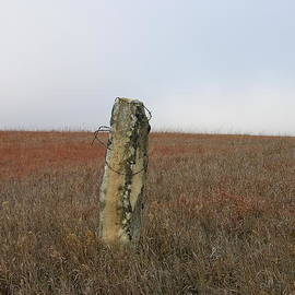 Keith Stokes - Rock Fence Post