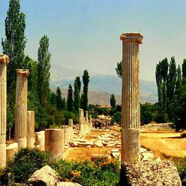 Lou Ann Bagnall - Ruins of  Aphrodisias
