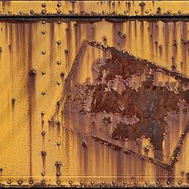 Donald Schwartz - Rust in Sign