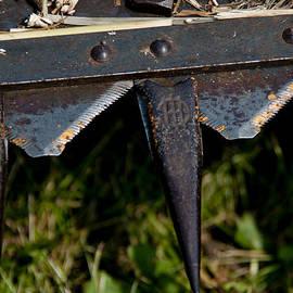 Wilma  Birdwell - Rusty Sharp Blades