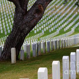 Bob Christopher - San Diego Military Memorial  4