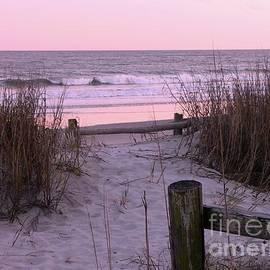Al Powell Photography USA - Sand and Sea