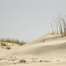 Al Powell Photography USA - Sand Dunes and Sea Oats