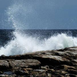 Lois Lepisto - Sea Spray